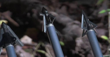 Best Broadhead