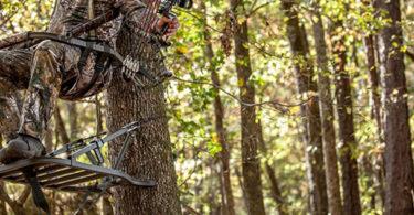 Best Hunting Treestands